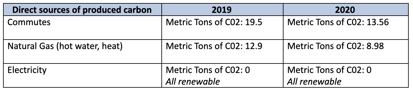 Direct sources of produced carbon, 2019 vs. 2020.