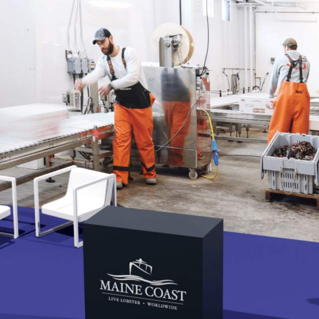 Maine Coast Company preview image